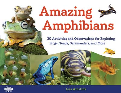 Book cover- Amazing Amphibians